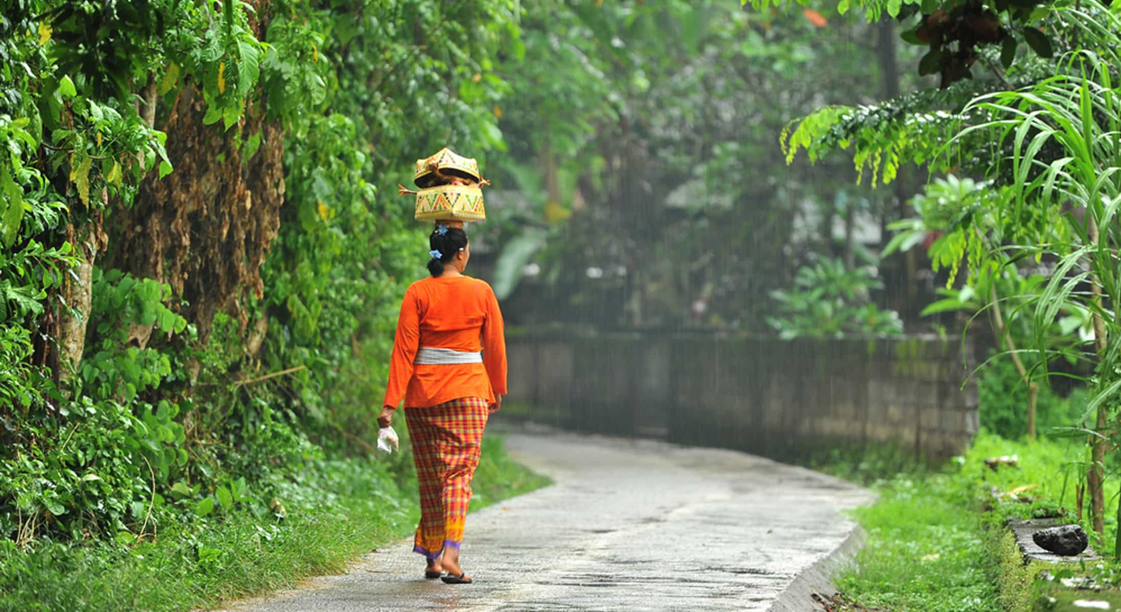 Bali Nature & Tradition - Full Day Tour